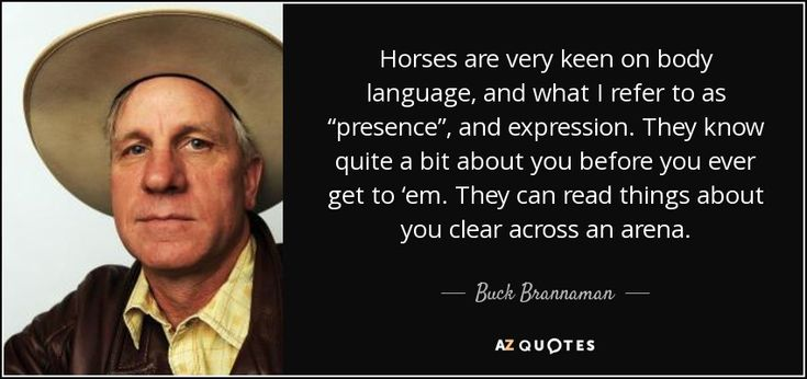 "Horses are very keen on body language, and what I refer to as ""presence"", and expression. They know quite a bit about you before you ever get to 'em. They can read things about you clear across an arena. - Buck Brannaman"