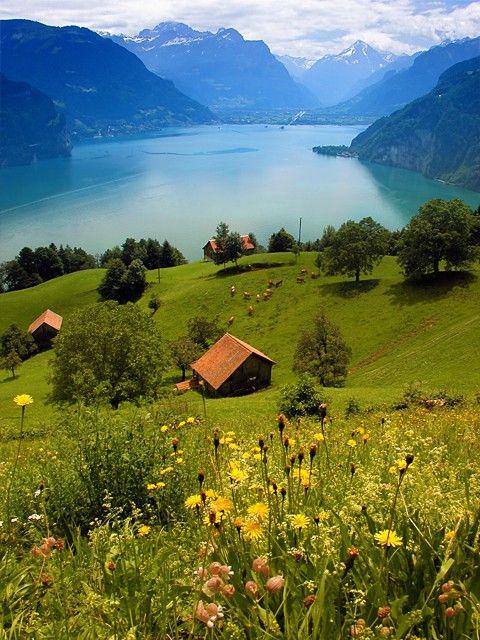 Lake Lucern, Switzerland  実写版ハイジだー