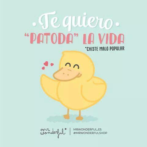 Mr Wonderful #compartirvideos #imagenesdivertidas #videowatsapp