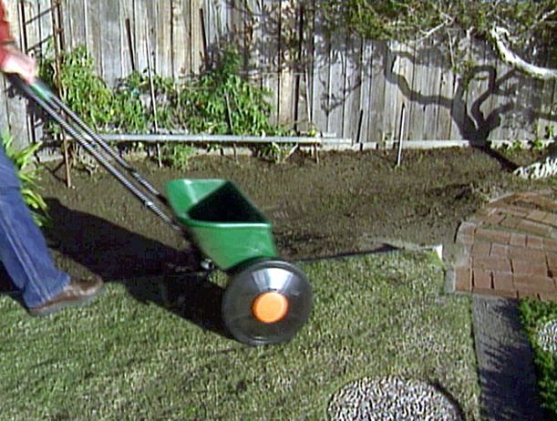 25 best ideas about lawn fertilizer spreader on pinterest for How often should you mow your lawn