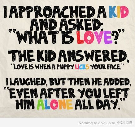 What is love?: Inspiration, Dogs, True Love, So True, Smart Kids, Puppies Love, Things, Love Quotes, Animal