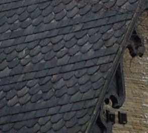 Victorian Gothic roof in alternating               plain and fish-tail slates