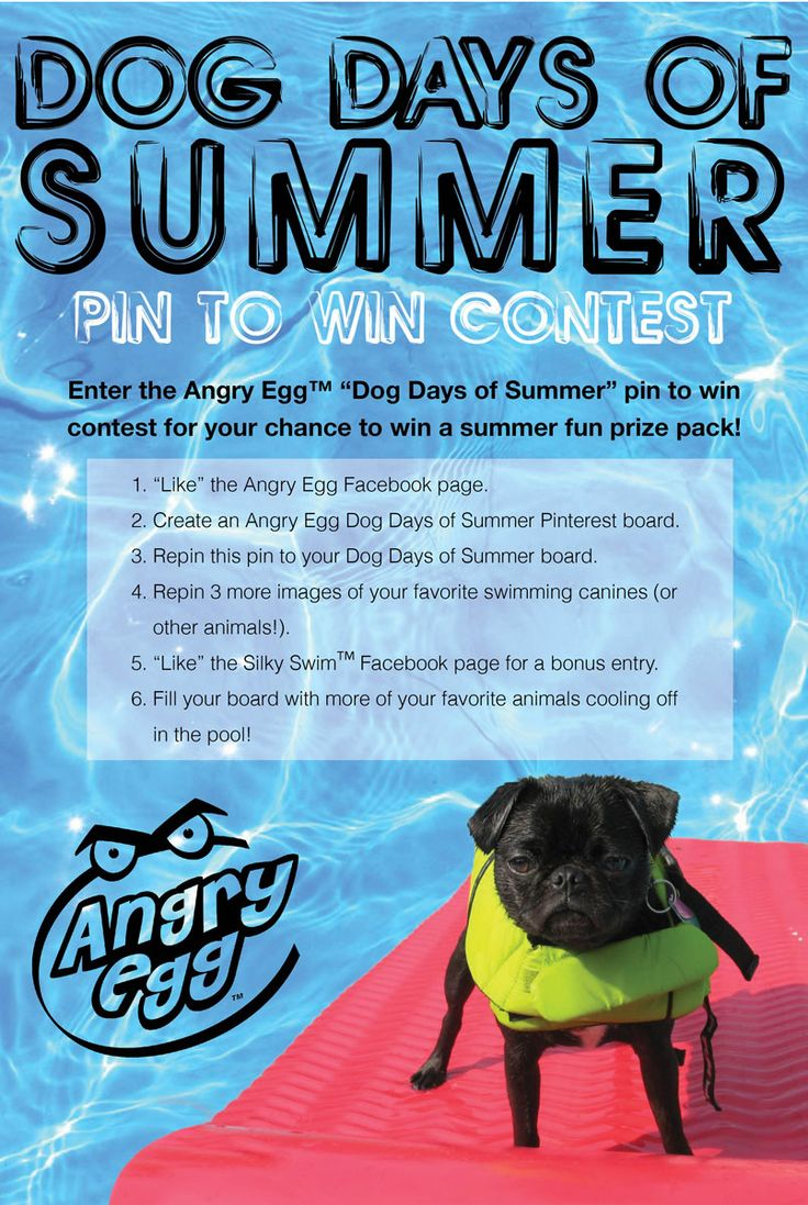21 Best Images About Dog Days Of Summer Pin To Win Contest