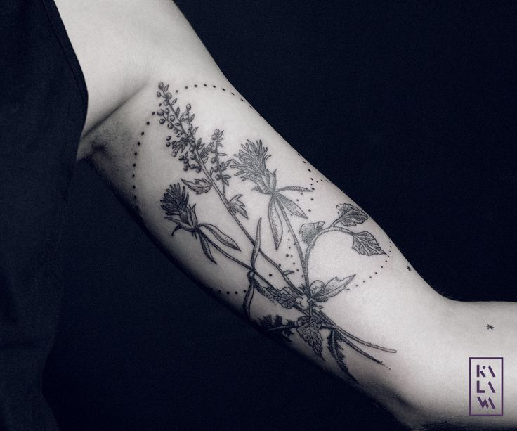 Botanic tattoo with weeds in dotwork. Tatouage botanique de mauvaises herbes, pissenlit, orties. By KALAWA Tattooer - Tattoo dotwork artist from Aix-en-provence (FRANCE)