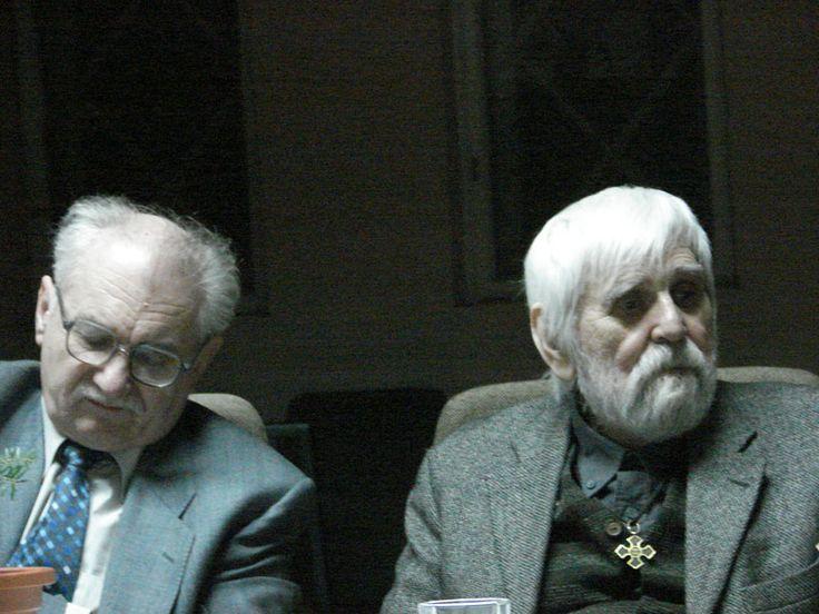 Cornel Ungureaby & Petre Stoica