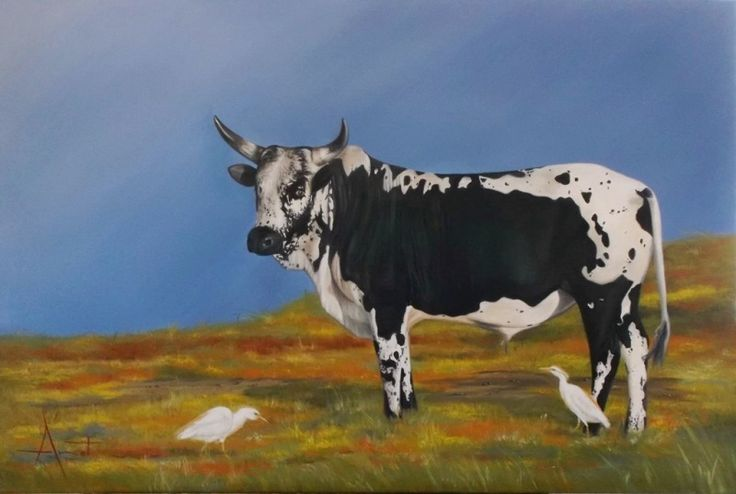 Nguni Oil on canvas 90cm x 60cm SOLD