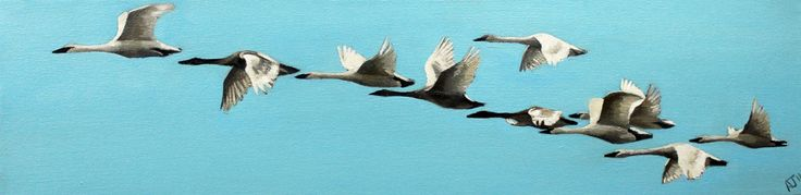 Flying Home by AlexJaborePaintings on Etsy