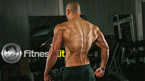 Anabolizantes Naturales: cómo ayudan a crear musculo.