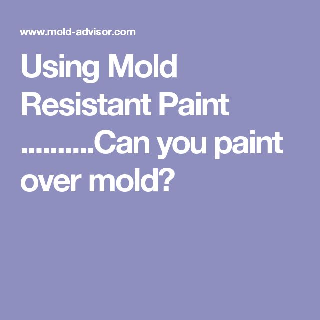 Using Mold Resistant Paint ..........Can you paint over mold?