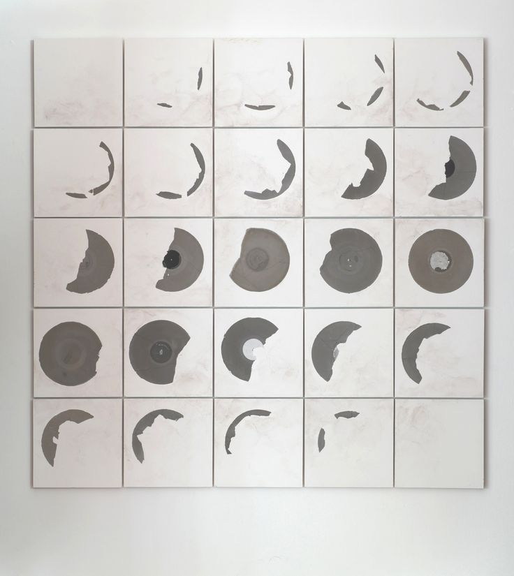 """Record Fossil 