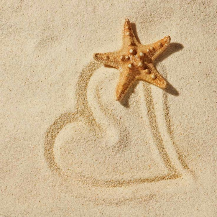 Coastal Love: Sandy Then, Beaches Love, At The Beaches, Sea Stars, Texts Messages, Starfish, Destinations Wedding, Honeymoons Destinations, Sands Heart