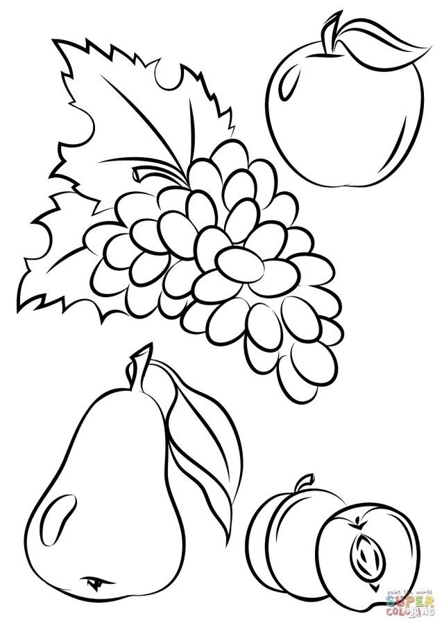 Great Image Of Fruits And Vegetables Coloring Pages Albanysinsanity Com Fruit Coloring Pages Vegetable Coloring Pages Fruits Images