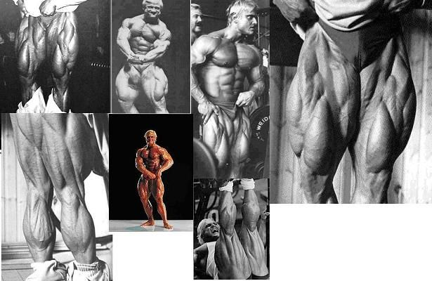 tom platz leg training manual