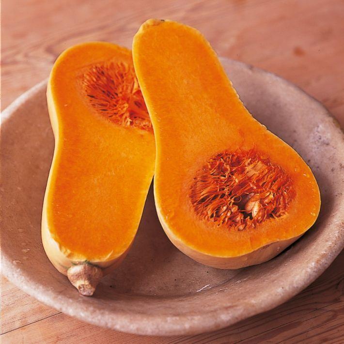 Htc winter pumpkin and squash