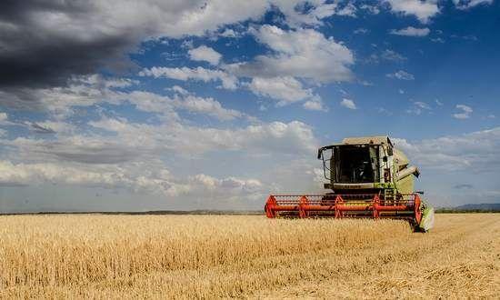 Raccolti agricoli inferiori in quantità e qualità, il premier incolpa il cambiamento climatico