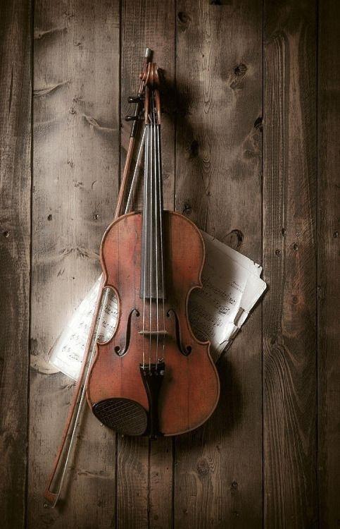Violin and Sheet Music Display