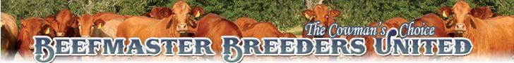 Beefmaster Breed Registry