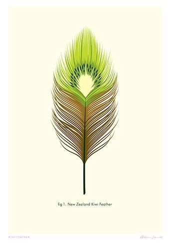 Check out Kiwi Feather Print by Glenn Jones at New Zealand Fine Prints
