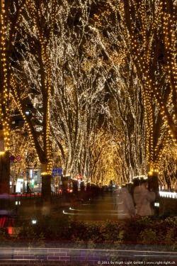 Pageant Of Starlight Framing Ideas Christmas Lights Holiday