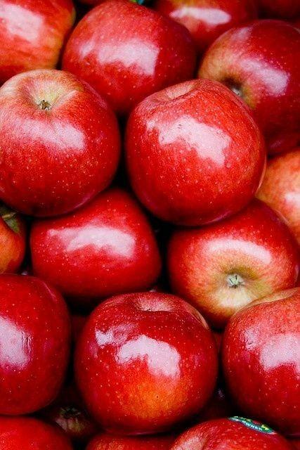 Por ser un color tan llamativo, el rojo también significa atracción, fuerza, vida, valentía y vigor. Es el color de la vida animal, puesto que los organismos del reino de las plantas no tienen sangre roja.