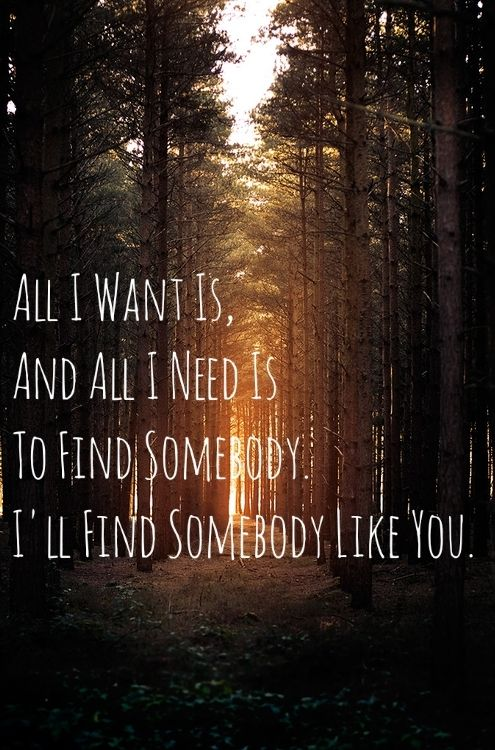 //I'll find somebody like you