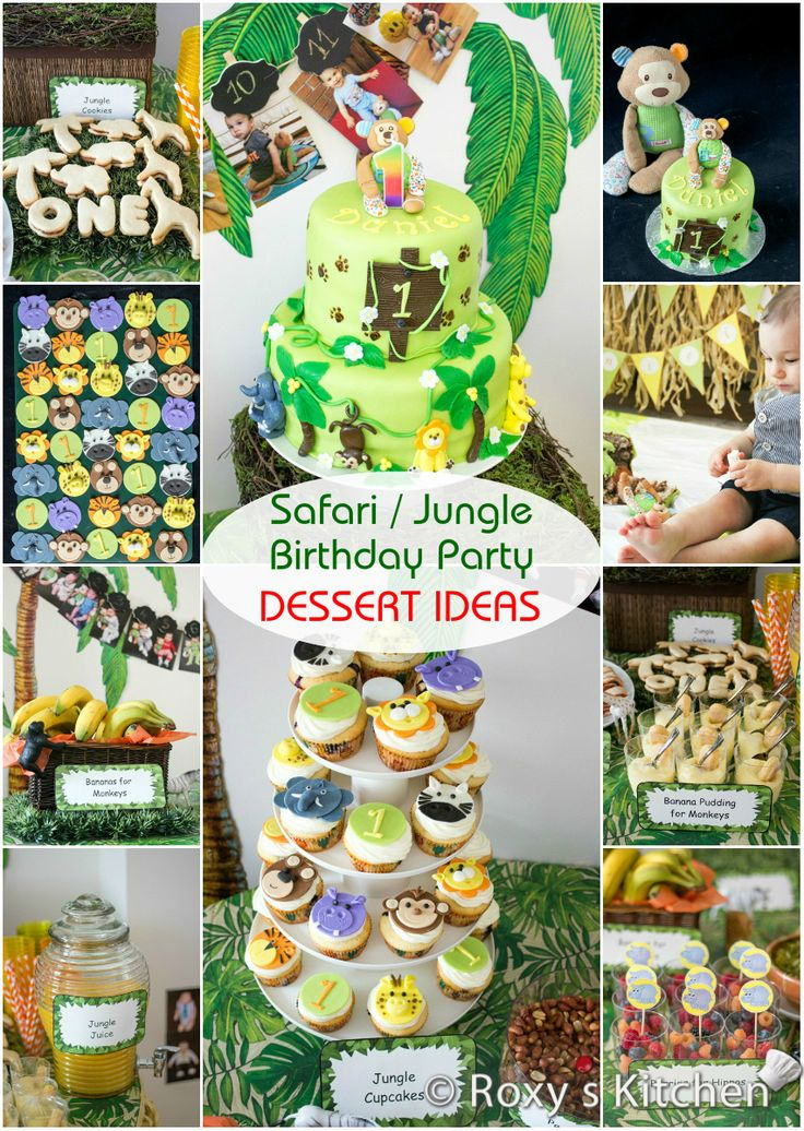 oure equipped with safari or jungle party supplies from windy city novelties perfect for birthday decorations or vbs theme parties our jungle and safari - Someone Decorating For A Party