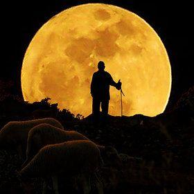 Shepard's moon.: Shepherd, Rafael Ramos, Silhouette, Art, Month, Moonlight, Photography, The Moon