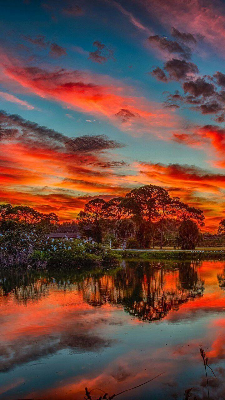 Forest Sunset Beautifulnature Naturephotography Nature Photography Sunset Reflections Forest Sunset Nature Photography Sunset Photography