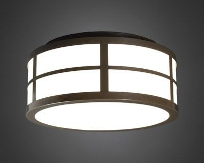 111 best Ceiling/Surface Mounted images on Pinterest ...
