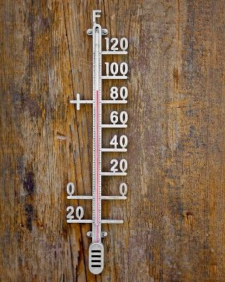 Indoor & Outdoor Thermometer #williamssonoma