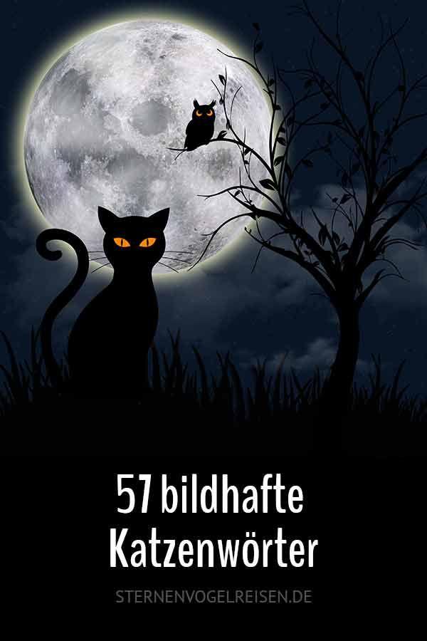57 Bildhafte Katzenworter Katzen Katzenarten Schone Deutsche