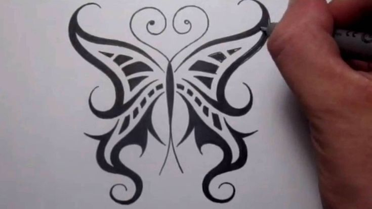 12 best images about amazing drawings of butterflies on for Easy and amazing drawings