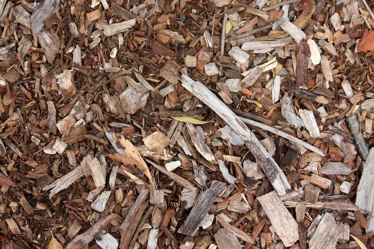 Natural mulch is extremely beneficial for a garden, but with so many types of natural mulch, which is the best choice for your garden? This article will provide tips for choosing the best organic mulch.