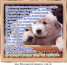 animais imagens - Pesquisa Google