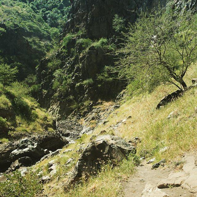 Expérience en Tanzanie: chemin de Ngare Sero chute d'eau #tanzania #tanzanie #maasai #massai #safari