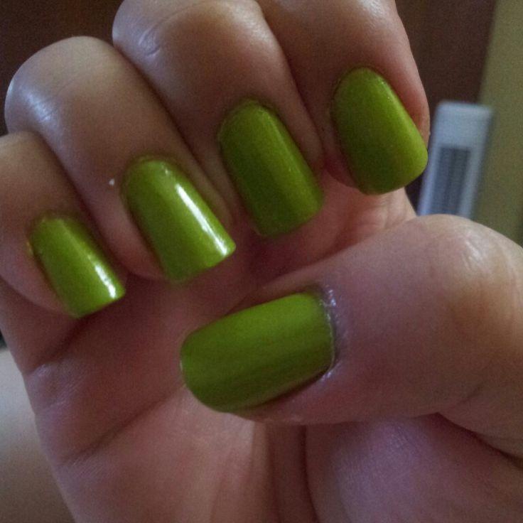 Kiko green- gold new collection