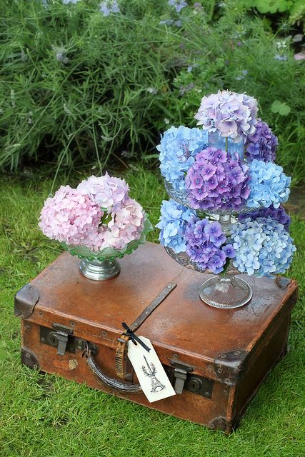 Hydrangeas on a suitcase. Nice decoration. Wedding | bruiloft | decoratie | vintage