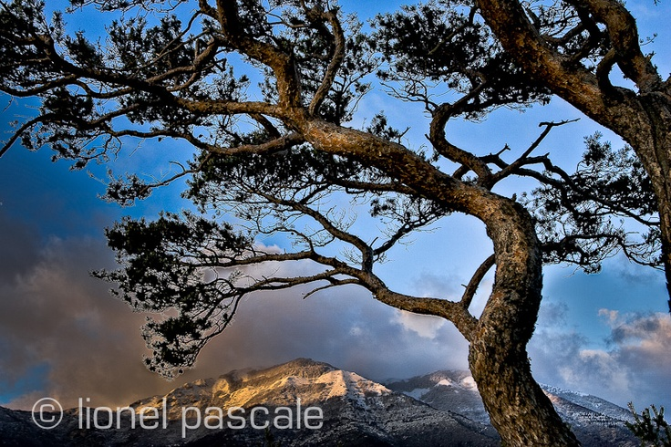 Vallée de Quint