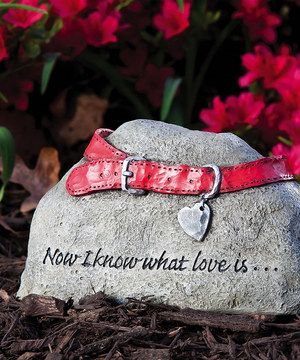 Love this Pet Tiding Stone by Evergreen on #zulily! #zulilyfinds