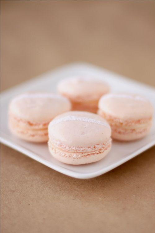 Champagne and Rose Macaron
