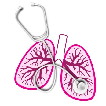 9 best Respiratory Therapy images on Pinterest Respiratory - respiratory therapist job description