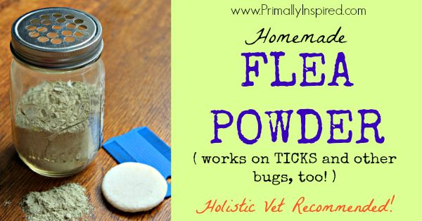 Homemade Flea Powder - Primally Inspired