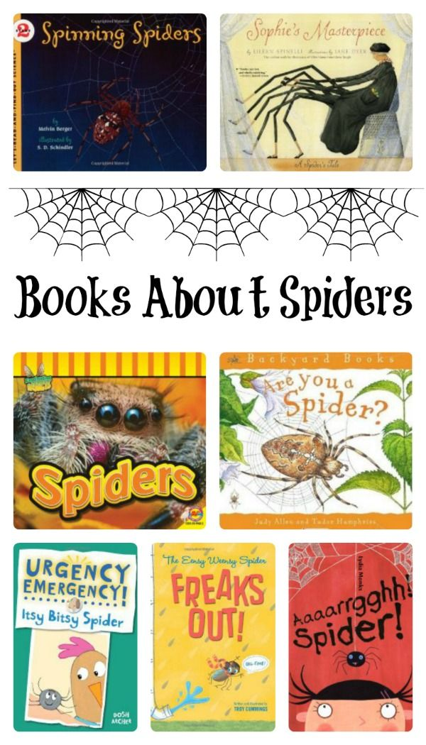 #Books About Spiders! #kidlit