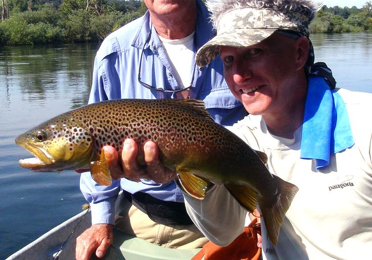 109 best images about eureka springs arkansas on for Fly fishing arkansas