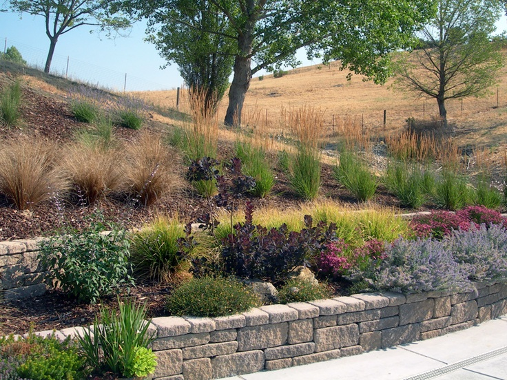 17 best images about slopes on pinterest terraced garden for Low maintenance drought resistant landscaping