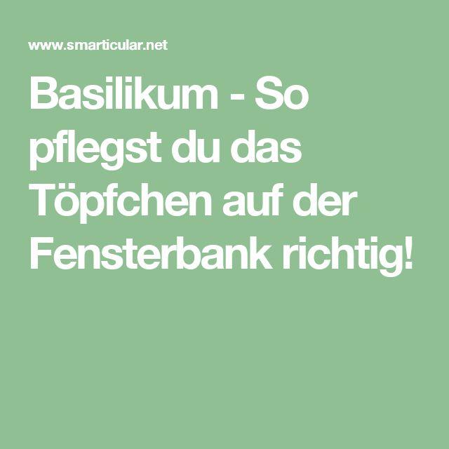 Basilikum - So pflegst du das Töpfchen auf der Fensterbank richtig!