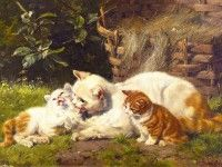 Скачать обои животные, рыжие котята, Julius Adam 1600x1200