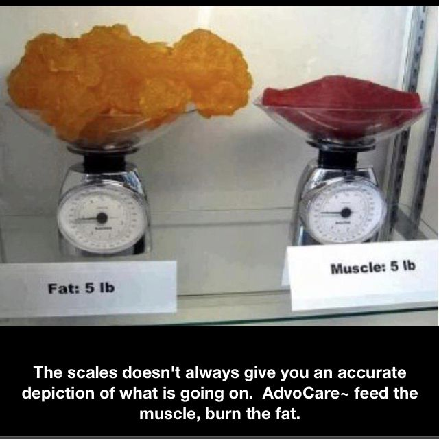 5 lbs of muscle vs 5 lbs of fat. Feed the muscle burn the fat.: Get Lean, Fat Vs Muscle, Diet, Numbers, Motivation, Building Muscle, Weightloss, Weights Loss, Lifting Weights