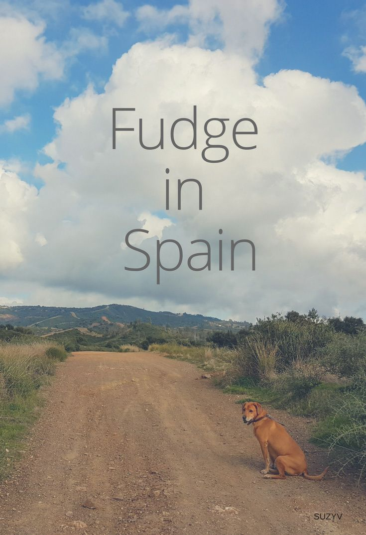 Fudge in Spain
