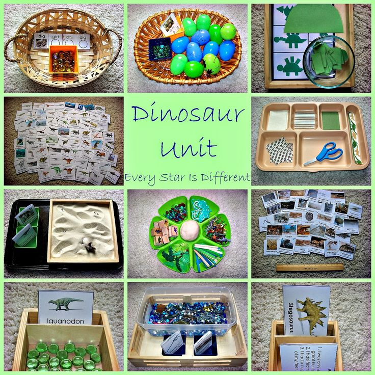 Dinosaur Unit w/ Free Printables from Every Star Is Different http://everystarisdifferent.blogspot.com/2014/06/dinosaur-unit-w-free-printables.html Plus Dinosaur Unit for Tots with Free Printables http://everystarisdifferent.blogspot.com/2014/06/dinosaur-unit-for-tots-w-free-printables.html